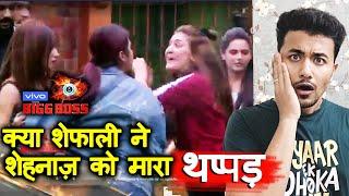 Bigg Boss 13 | Shefali Zariwala SLAPS Shehnaz Gill In EGG Task? | BB 13 Episode Preview