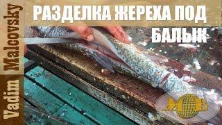 Как разделать жереха для балыка или балык из жереха. Мальковский Вадим
