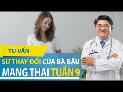 Sự Thay Đổi Của Bà Bầu Tuần 9 - Kinh Nghiệm Mang Thai Hữu Ích