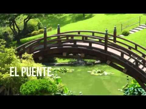 El Puente, Reflexiones diarias, Reflexiones de vida