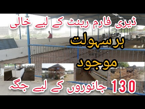 FARM AVAILABLE FOR RENT l karachi l 0331-0304812