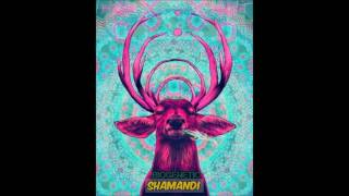 Biogenetic - SHAMANDI (Original Mix)