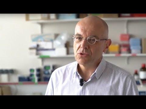 Traitement de la ménopause : un oestrogène naturel à l'étude