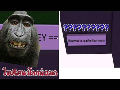 Roblox : Wacky Wizards ไขปริศนาลิงบาบูนผู้พัฒนาเกมส์