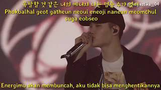Exo (엑소) Let out the beast + Lucky (EXO'rDIUM in Seoul) [Sub Indo]