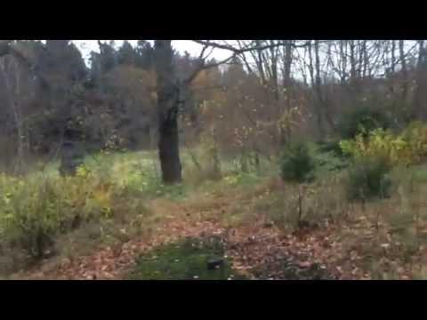 En stockholmare ramlar ner i ett träsk i Turfgame