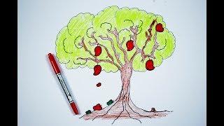 mango tree easy draw step