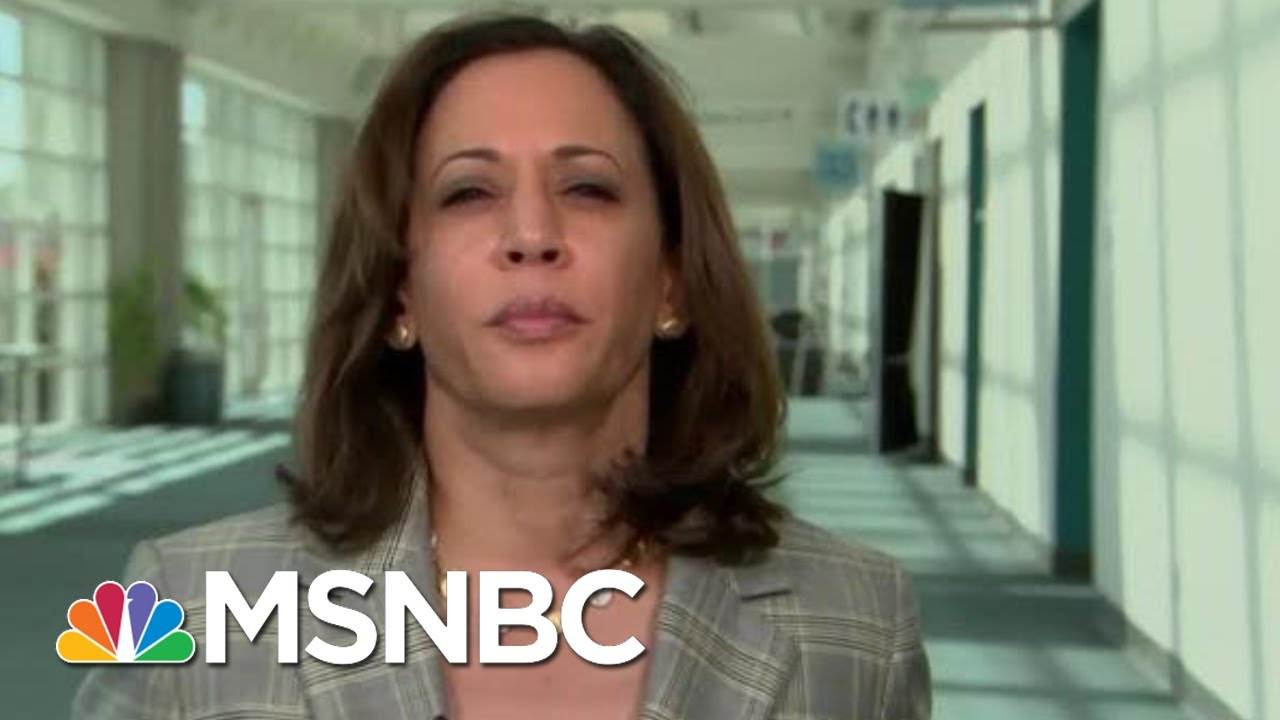 Kamala Harris on gun massacres: Trump is 'tweeting out the ammunition'