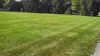 Green Valley Landscapes Lawn Mowing Service