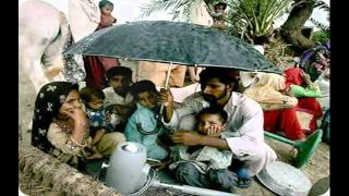 O Palan hare (tribute 2 PK FLOOD victims by INDIANS).wmv