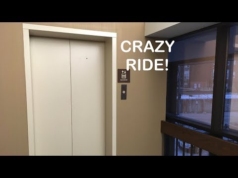 She's gone crazy!  The elevator at US bank is drunk and took us on a WILD ride!