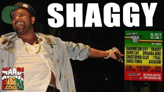 Shaggy - Church Heathen @ Reggae Geel 2015
