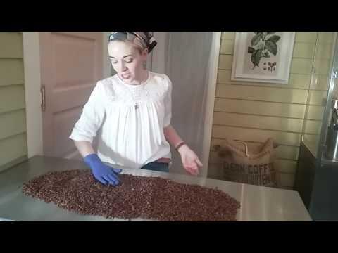 How We Roast Your Coffee
