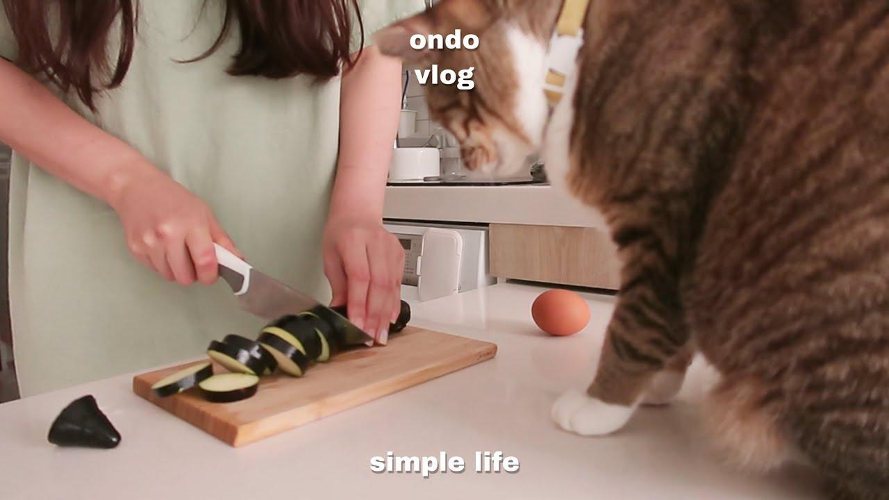 ENG)고양이 집사의 하루,토마토 매실절임 만들기,가지로 맛있는 요리 해 먹고,당근케이크 만드는 일상