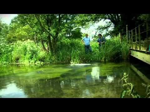 Fishing For American Signal Crayfish - Gordon Ramsay