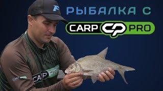 Ловля крупного леща на флэт фидер! Рыбалка с Carp Pro на диком Днепре!