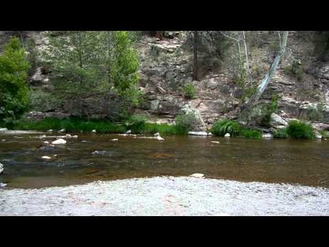 Gila Springs Campground Site