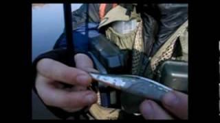 Энциклопедия воблеров на видео — ZipBaits Rigge 90F