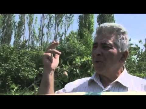 Popular Videos - Dagestan & Documentary Movies