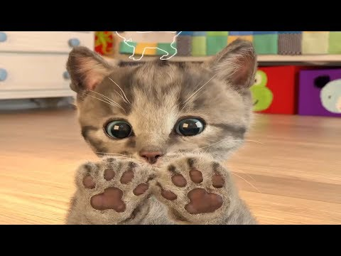 Play Fun Pet Care Kids Games - Little Kitten My Favorite Cute Cat Gameplay 2