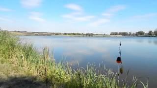 Рыбалка . Ловля толстолоба и карася . Снасть для ловли толстолобика ( толстолоба).(На снасть для ловли толстолоба ловится не только толстолобик , но и карась , который обычно ловят на поплавк..., 2014-09-23T06:39:57.000Z)