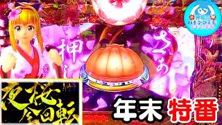 【年末特番】《沖海4桜199》海物語実践!神龍のパチンコ実践 【File56】《スーパー海物語IN沖縄4 桜バージョン 》