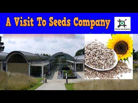 A seed company |Tech Science