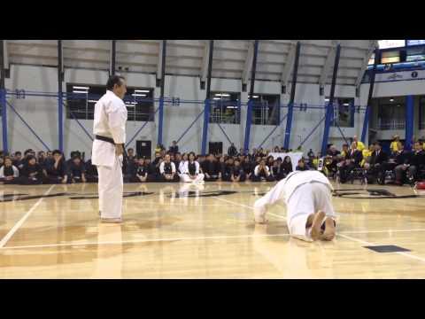 Nikkei Karate Rules!!! 2015