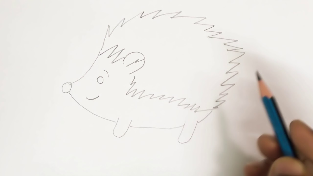 Line Drawing Hedgehog : How to draw hedgehog for kids step by youtube