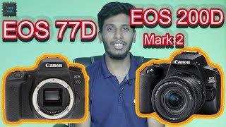 Canon 77d vs 80d video clip