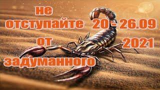 Скорпион.💗🍁20 - 26💗🍁сентября 2021г.Таро прогноз...