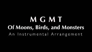 MGMT - Of Moons, Birds, and Monsters (Instrumental)