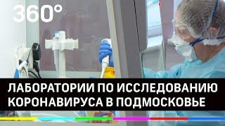 Две лаборатории для исследований на наличие коронавируса заработали в Подмосковье