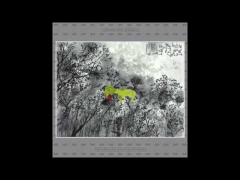 The John Lurie National Orchestra ― Flutter