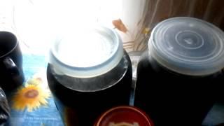 Рецепт заготовки черноплодной рябины на зиму