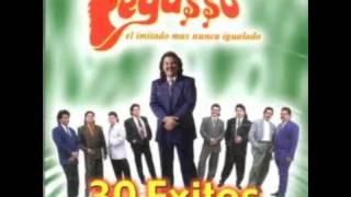 GRUPO PEGASSO   30 EXITOS