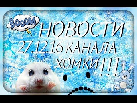 Новости канала ХОМКИ 27.12.16