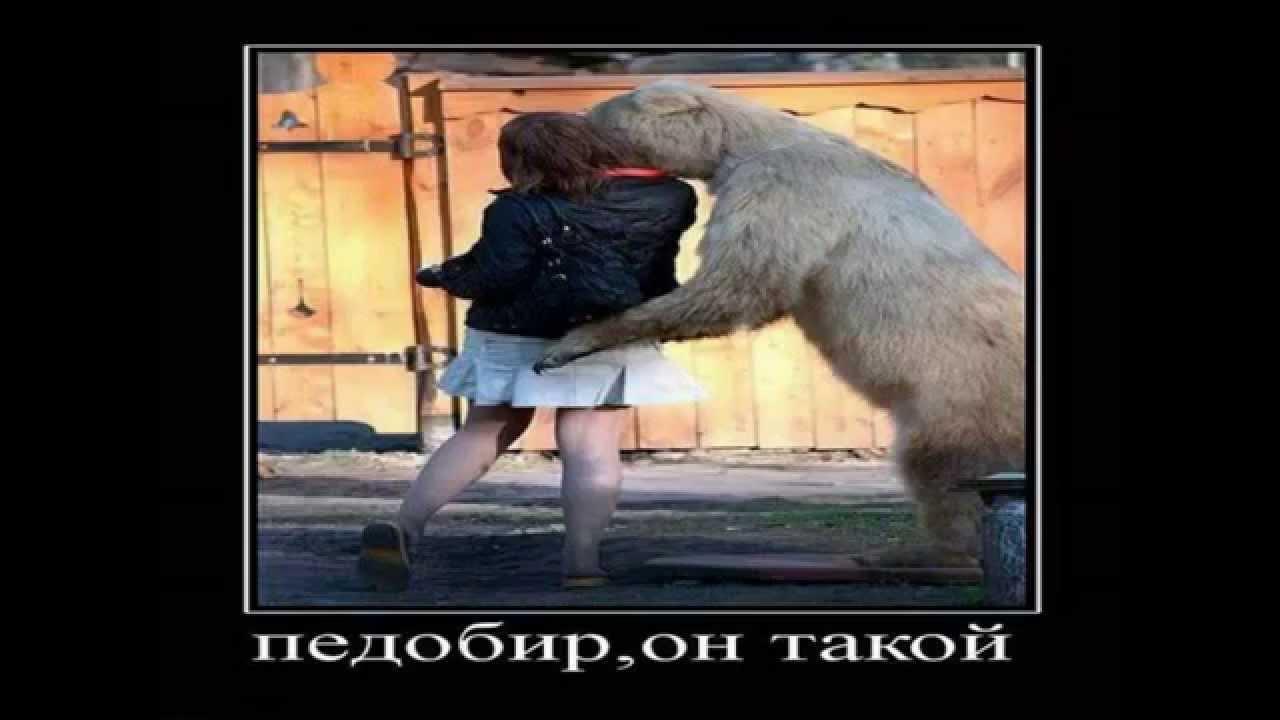 Картинки Демотиваторы Приколы 22736 - YouTube