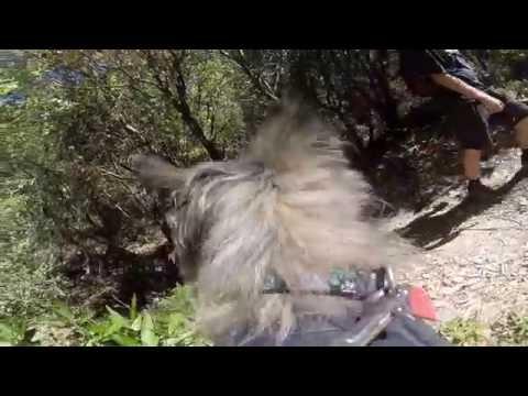 Redwood Regional Park hike