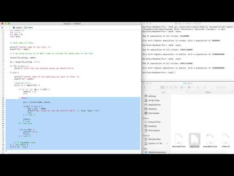 Find The Line And Position Of A Substring - Program With Persistent Data - Lab 2 - Part 3