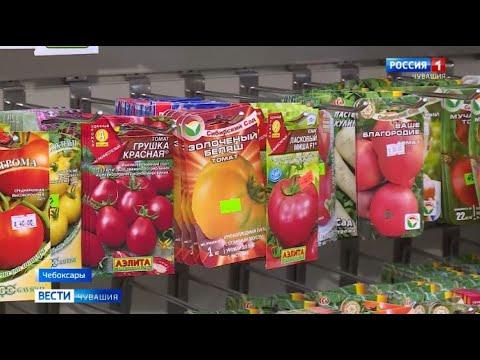 Россельхознадзор Чувашии проверяет магазины и торговые точки с семянами