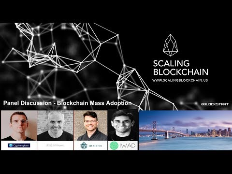 Scaling Blockchain 2018 – Panel Discussion – Mass adoption