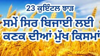 23 ਕੁਇੰਟਲ ਝਾੜ ਸਮੇਂ ਸਿਰ ਬਿਜਾਈ ਲਈਕਣਕ ਦੀਆਂ ਮੁੱਖ ਕਿਸਮਾਂ, wheat crop variety with maximum yield,