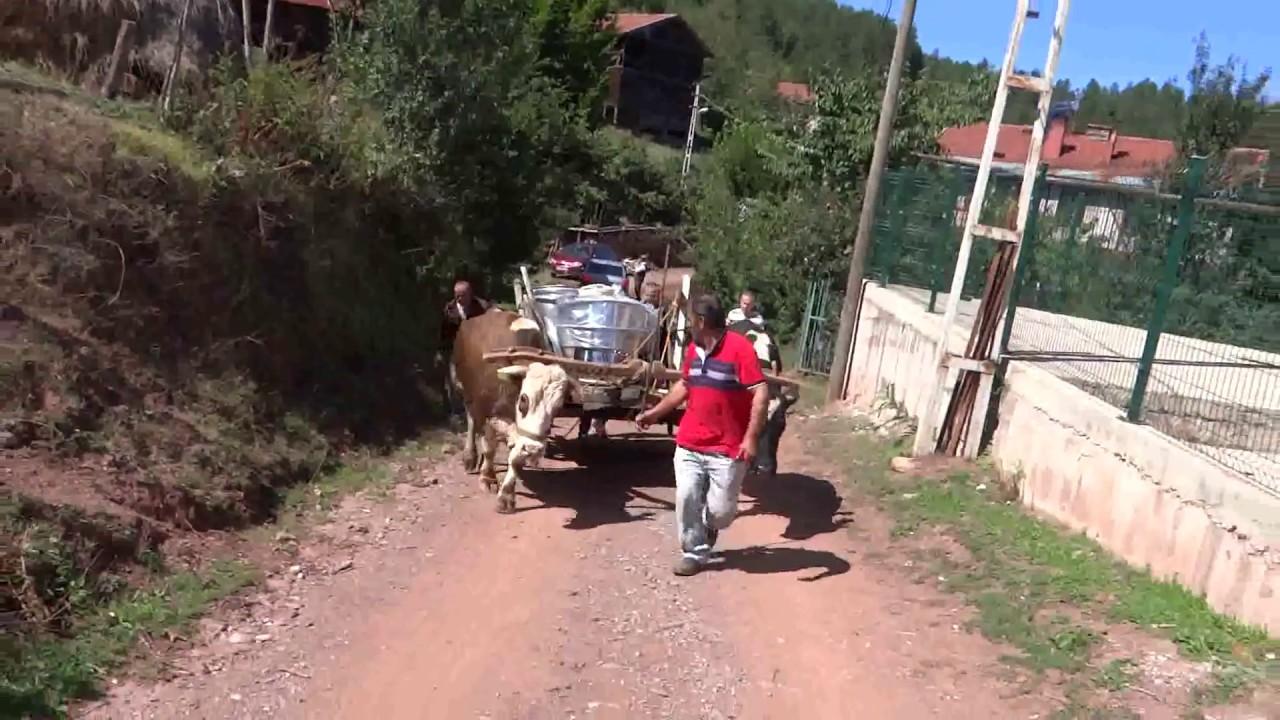 Süper Köy Hayatı Kastamonu Azdavay Irna Mah  Masrafsız Kani Arabası Bayram Hazırlıklar