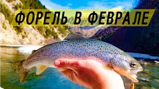Рыбалка на форель в конце февраля Крупняк попался