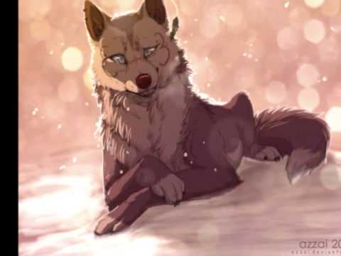 anime wolves on top of the world youtube