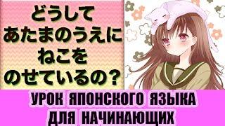 Японский язык для начинающих. Почему у тебя на голове кошка?  どうして頭の上に猫をのせているの?