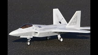 Freewing F22 Raptor FLIGHT 6s 6200 pack from Motion RC F-22