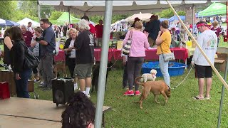 Paw Fest 2019 in Stow helps raise money for Pilot Dogs and more