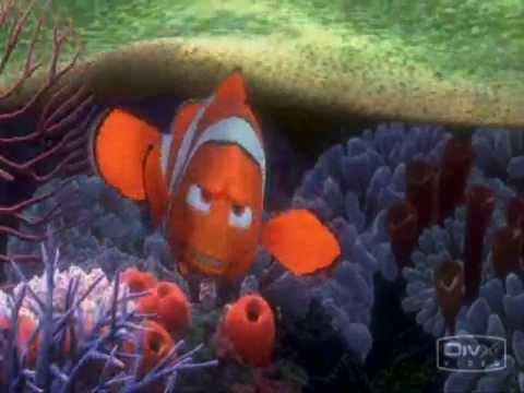Findet Nemo - Bo Ogfosst